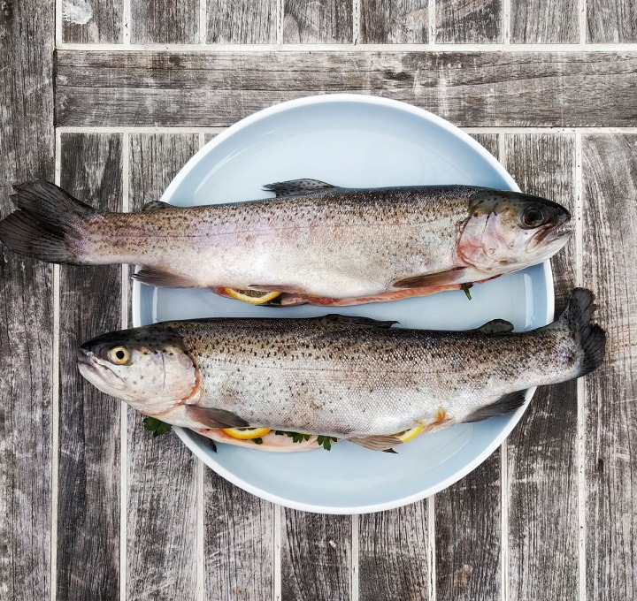Poisson d'avril: The French April Fool'sDay